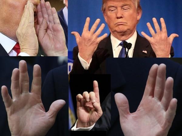 Donald Trump - Hands